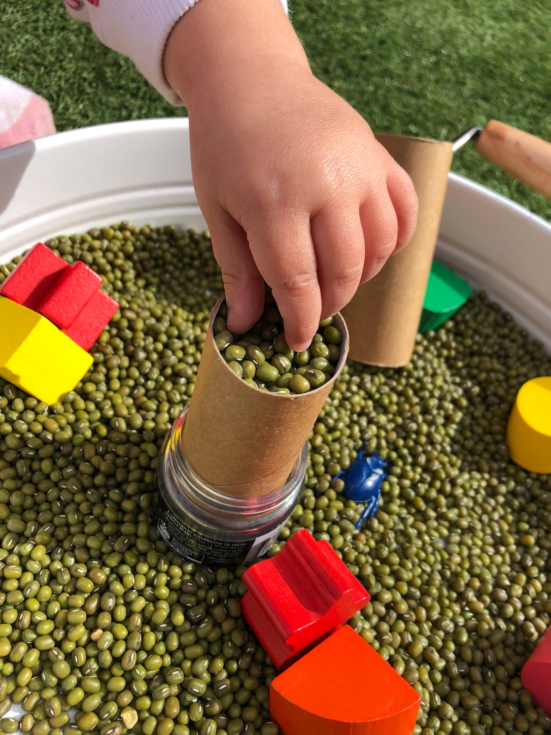 Sensory Play with Mung Beans