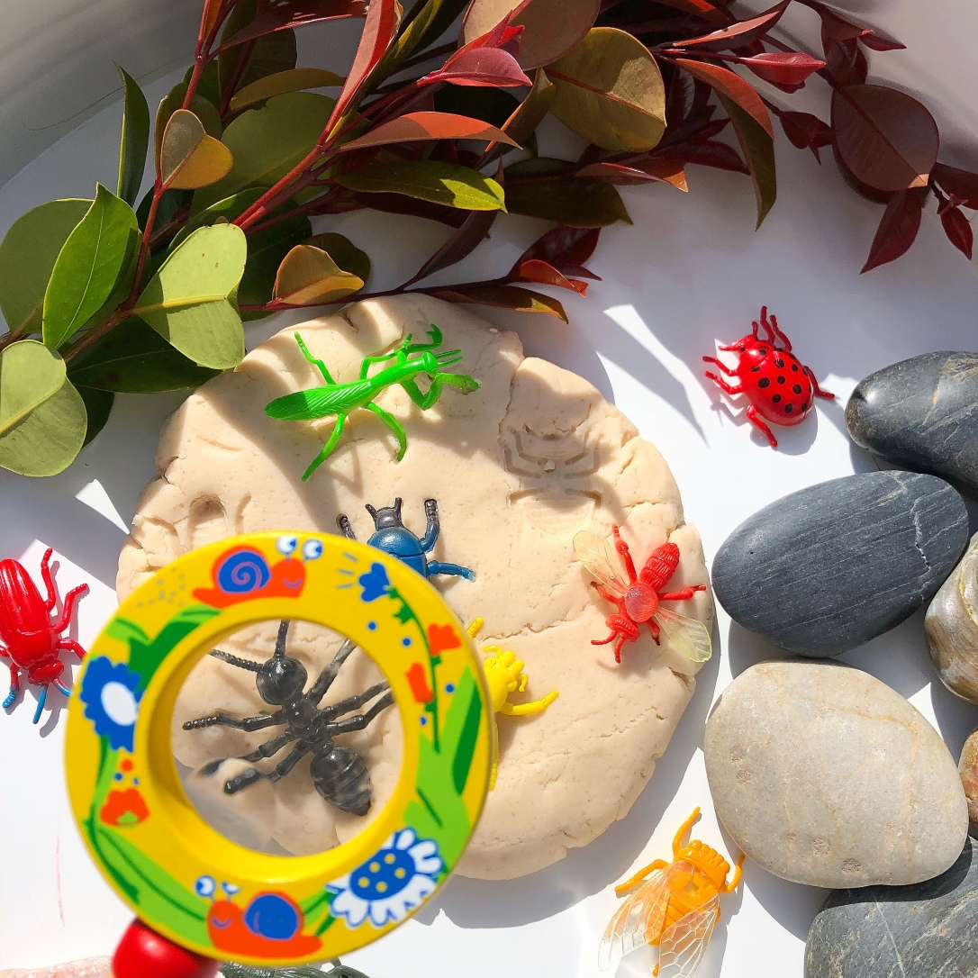 Insect play idea with homemade Play Dough